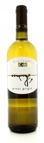 Vino Biologico Pinot Grigio
