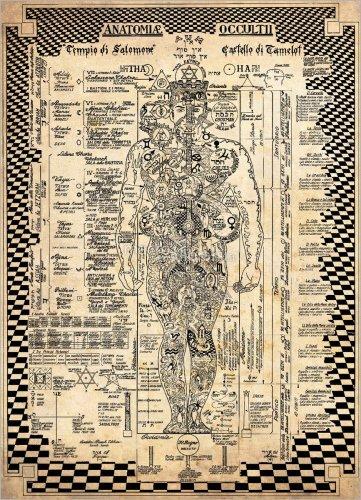 Poster - Anatomia Occulta
