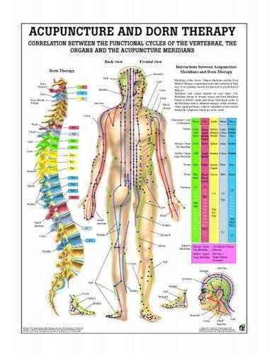 Poster Agopuntura e Terapia Dorn