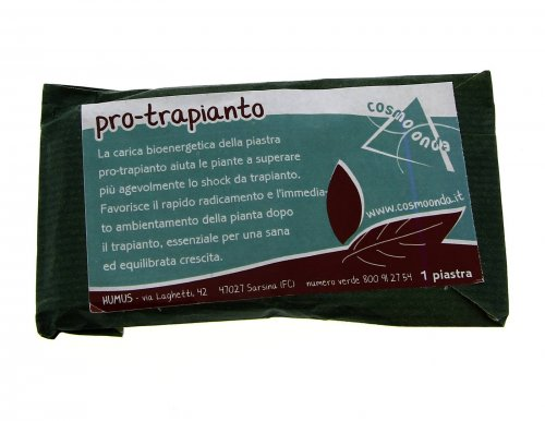 Piastra Pro Trapianto