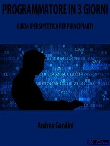Programmatore in 3 Giorni (eBook)
