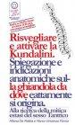 Risvegliare e Attivare la Kundalini (eBook)