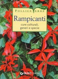 Rampicanti
