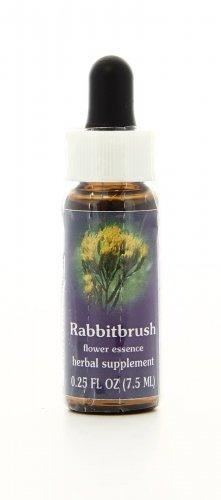 Rabbitbrush Essenze Californiane