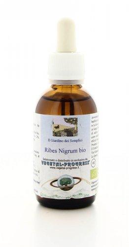 Ribes Nigrum Bio - Estratto Idrogliceroalcolico
