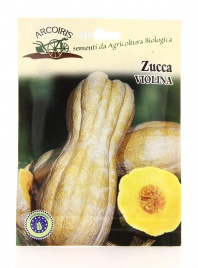 Semi di Zucca Violina - Gr 25