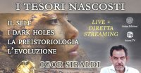 """Incontri """"I Tesori Nascosti"""" con Igor Sibaldi - 2: I Dark Holes"""" - Lunedì 12 Ottobre 2020"""