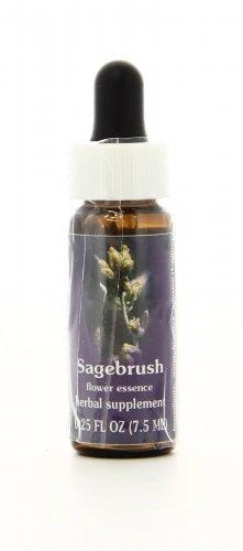 Sagebrush Essenze Californiane