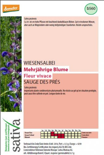 Salvia Selvatica - b560
