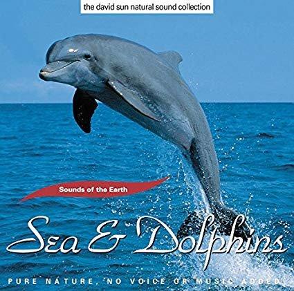 Sea & Dolphins