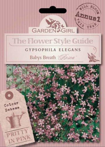 Semi di Gypsophila Elegans - Babys Breath Rosea