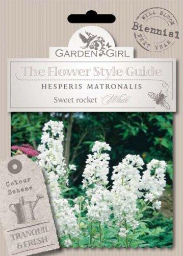 Semi di Hesperis Matronalis - Sweet Rocket White