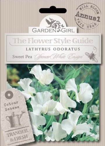 Semi di Lathyrus Odoratus - Sweet Pea Spencer White Ensign