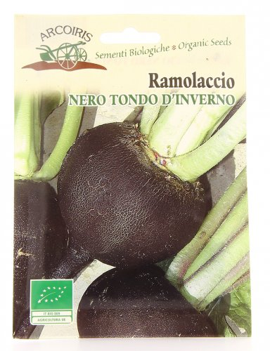 Semi di Ramolaccio Nero Tondo d'Inverno - 4 Gr
