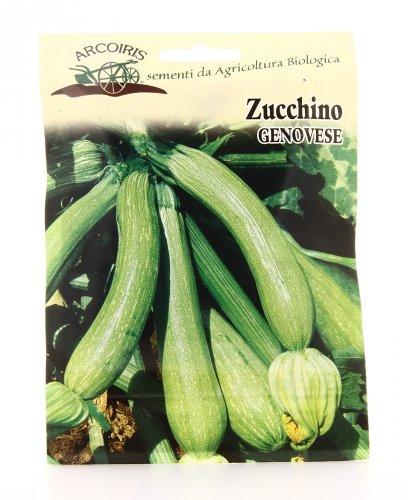 Semi di Zucchino Genovese- 25 Gr