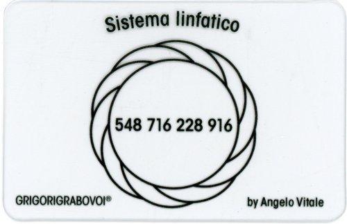 Tessera Radionica 48 - Sistema Linfatico