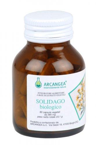 Solidago Biologico - Capsule Vegetali