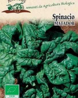 Semi di Spinacio Matador - 500 Gr