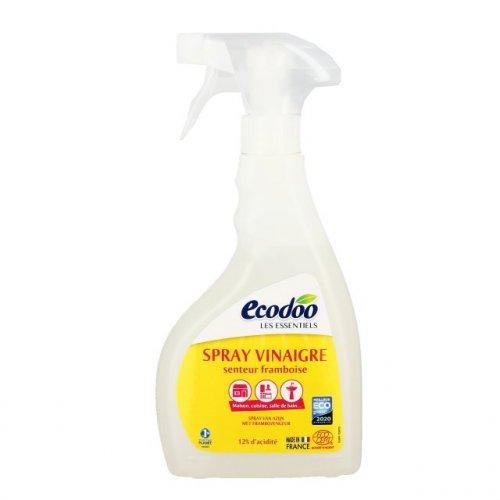 Spray Detergente all'Aceto - Lamponi