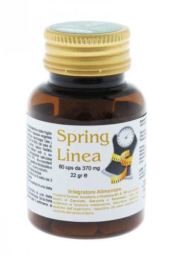 Spring Linea Capsule