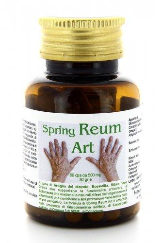 Spring Reum Art - Monelli Ezio