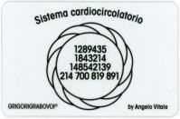 Tessera Radionica 35 - Sistema Cardiocircolatorio