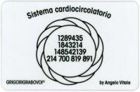 Tessera Radionica - Sistema Cardiocircolatorio