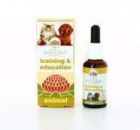 Training & Education Animal