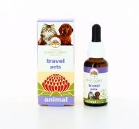 Travel Pets Animal