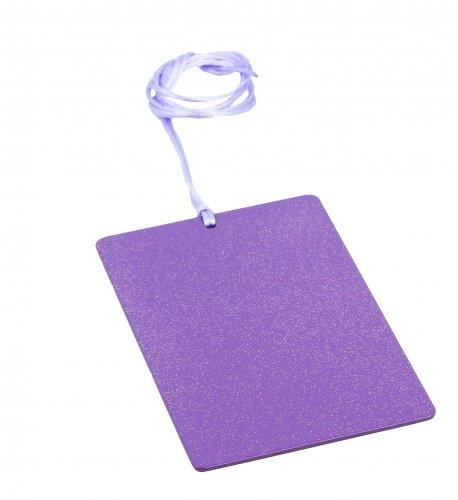 Piastra di Tesla Purpurea Sunny - Rettangolare Card
