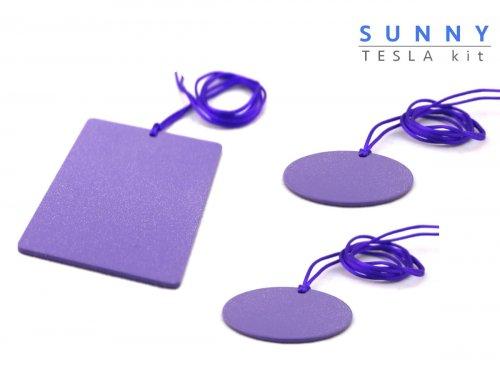 Sunny Piastre di Tesla Purpuree - Kit Amicizia