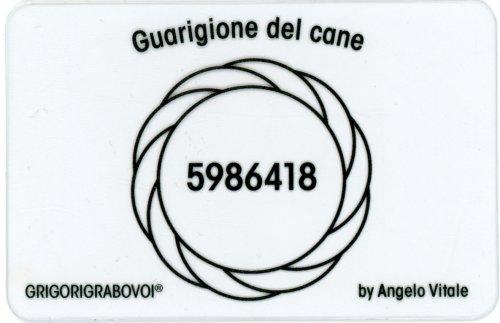 Tessera Radionica 16 - Guarigione del Cane