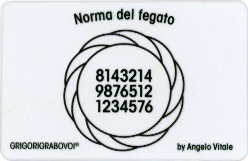 Tessera Radionica 22 - Norma del Fegato