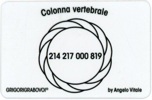 Tessera Radionica 36 - Colonna Vertebrale
