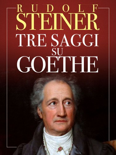 Tre Saggi su Goethe (eBook)