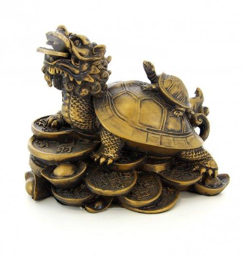 Tartaruga con testa di drago for Tartaruga prezzo