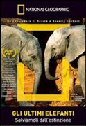 Gli Ultimi Elefanti - DVD