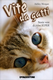 Vite da Gatti