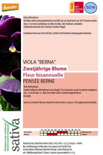 "Viola ""Berna"" - b216"