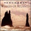 Whales of Atlantis
