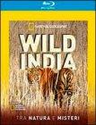 Wild India - Blu-Ray Disc