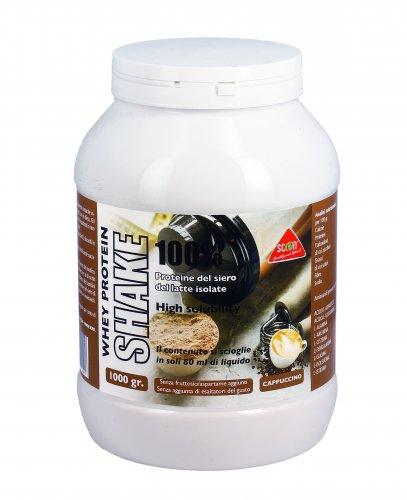 Proteine del Siero del Latte Whey Protein Shake 100%
