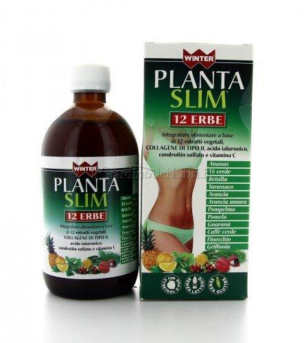 Planta Slim 12 Erbe - Depurativo e Drenante