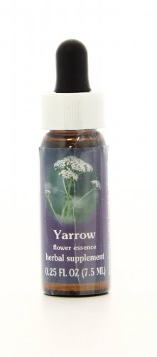 Yarrow Essenze Californiane