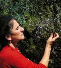Rosalba Gioffrè - Foto autore