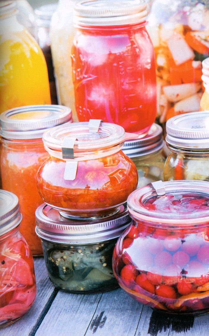 alimenti fermentati immagine
