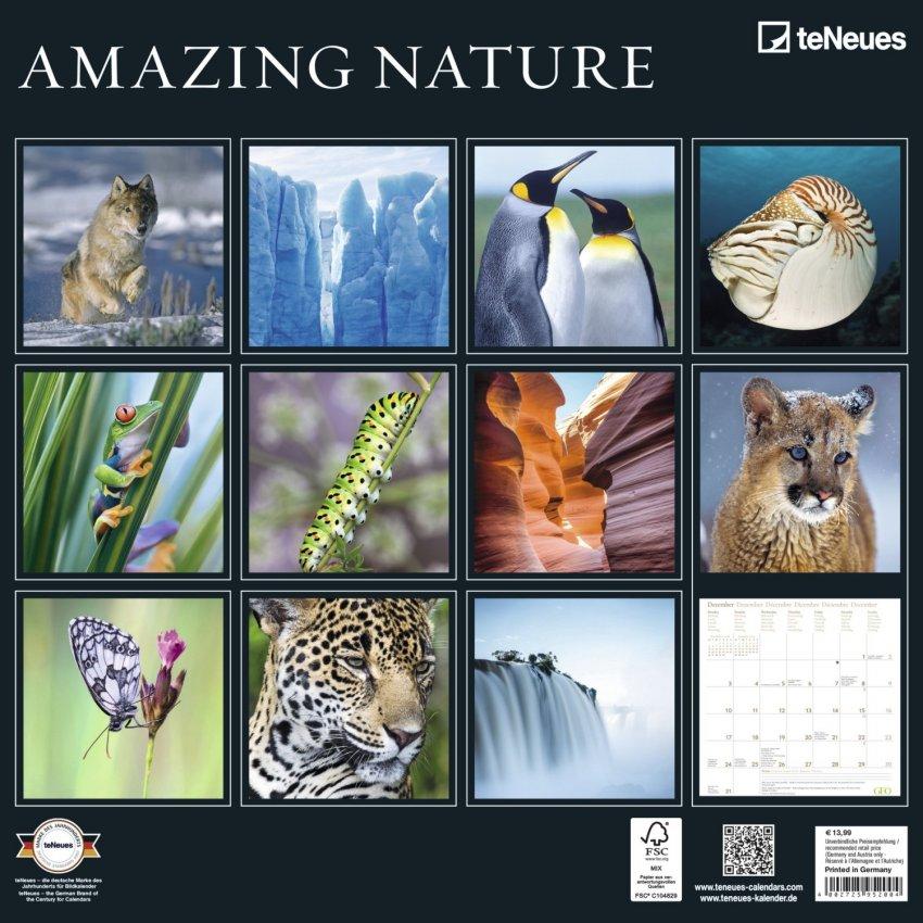 Calendario Amazing Nature 2018 - Retro