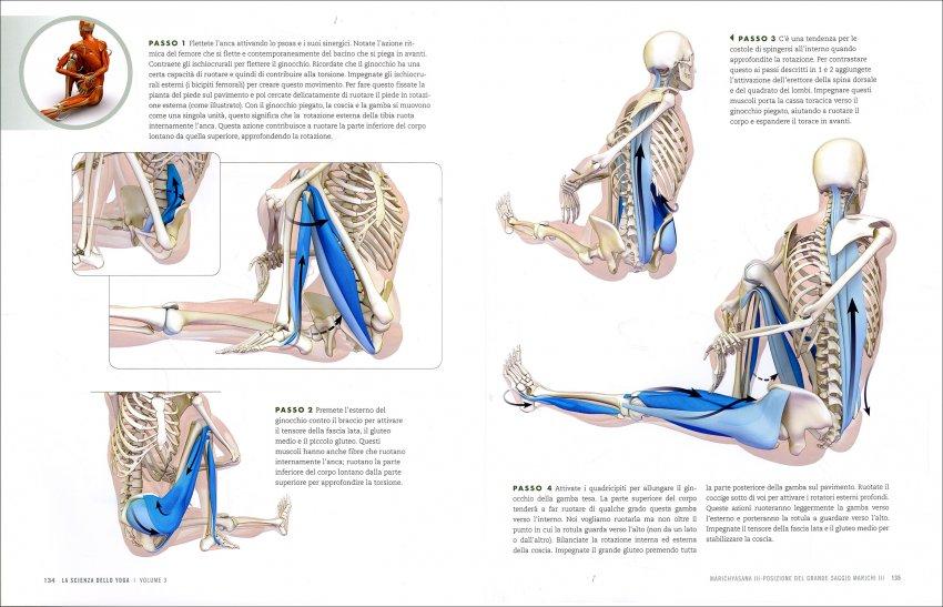 Anatomia delle Posizioni - I Piegamenti all'Indietro e delle Torsioni - Pag. 134