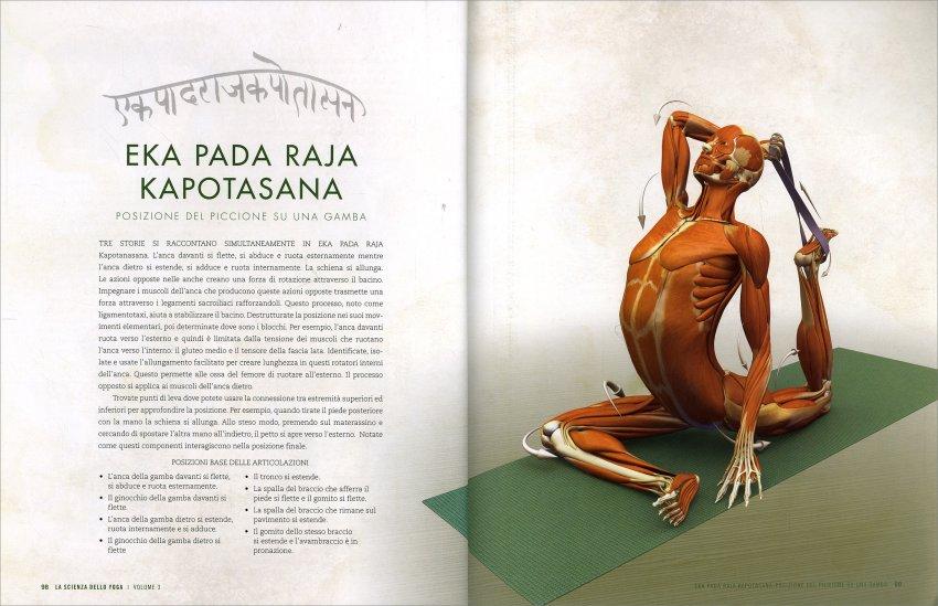 Anatomia delle Posizioni - I Piegamenti all'Indietro e delle Torsioni - Pag. 98