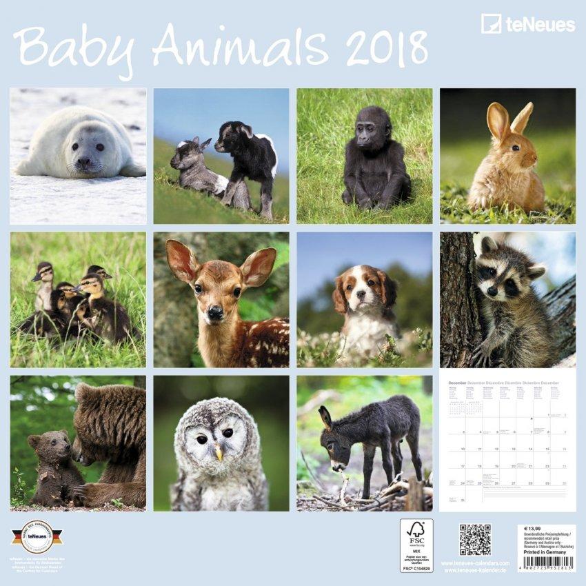 Calendario Tierkinder 2018 - Baby Animals - Retro